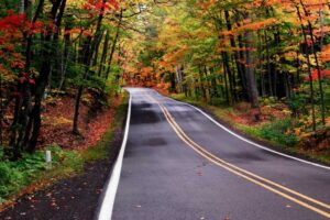 Road Fall Colors