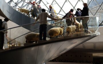 Sheep at the Louvre