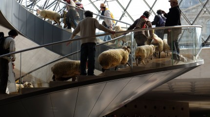 What the Flock was going on at the  Louvre?